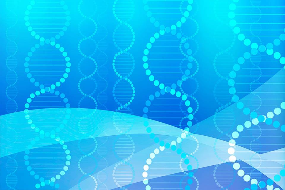 バイオテクノロジーのイメージ