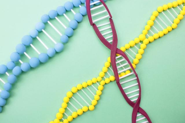 遺伝子工学のイメージ